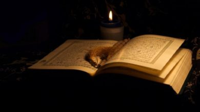 Photo of The Awesomeness of Night of Qadr